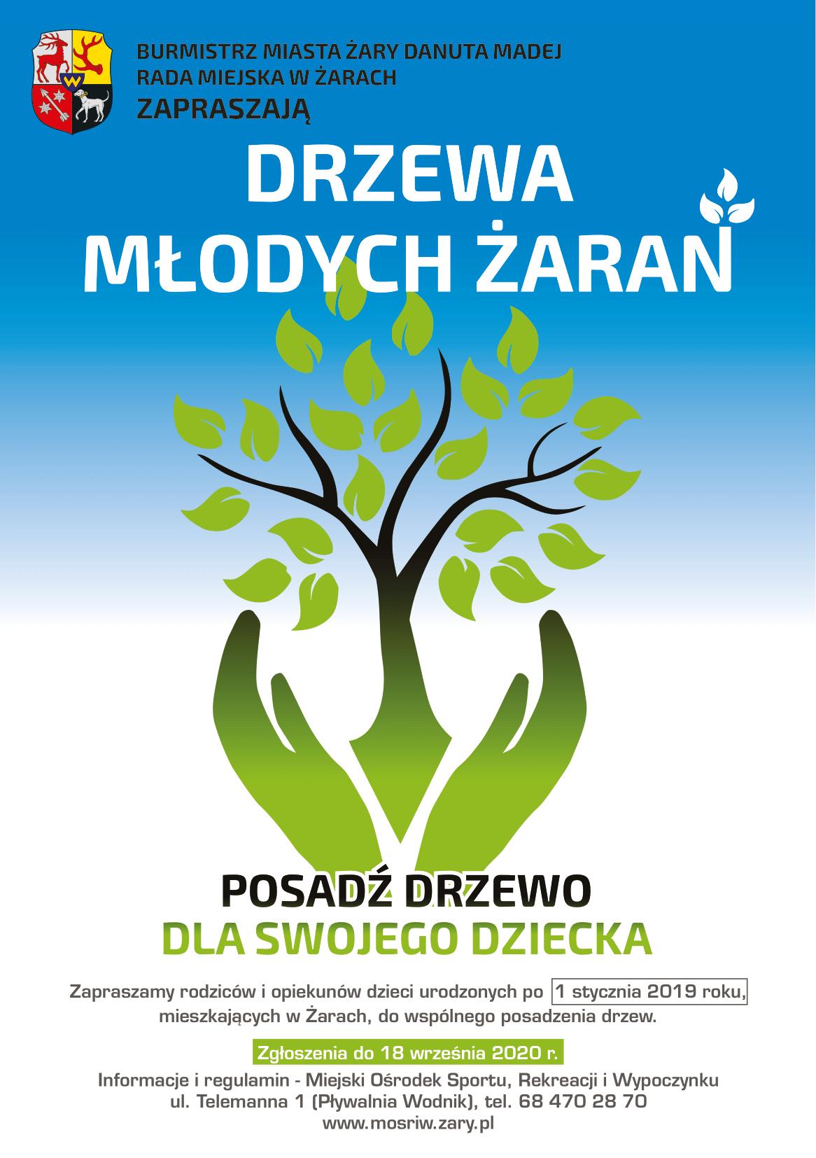 Ilustracja do informacji: Drzewa Młodych Żaran